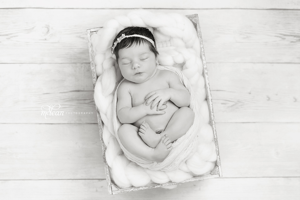 orlando newborn photos